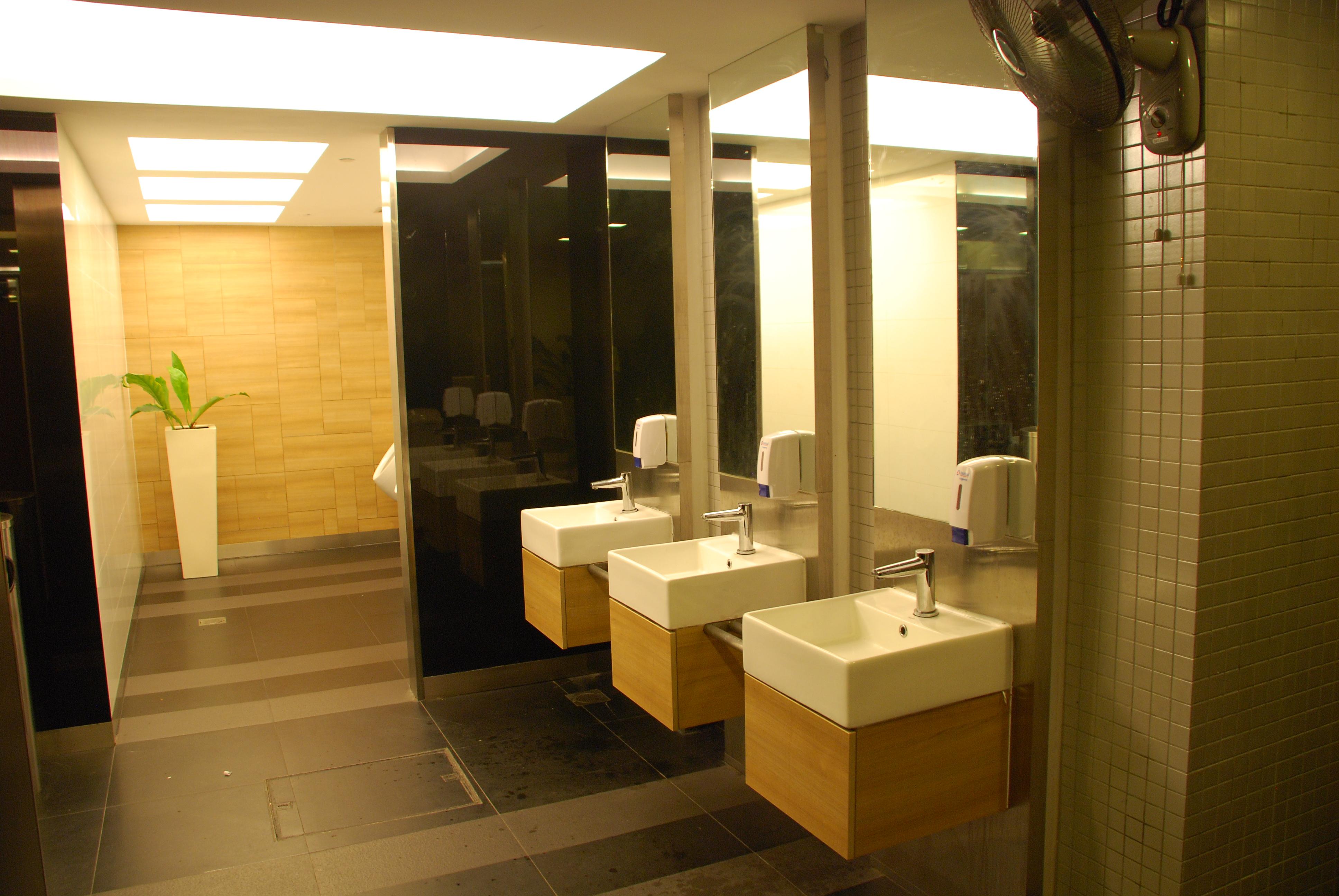 1 Atrium Toilet (2010)