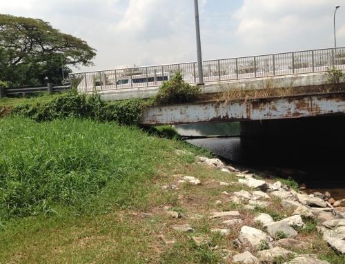 Proposed Infrastructure Under Existing Vehicular Bridge